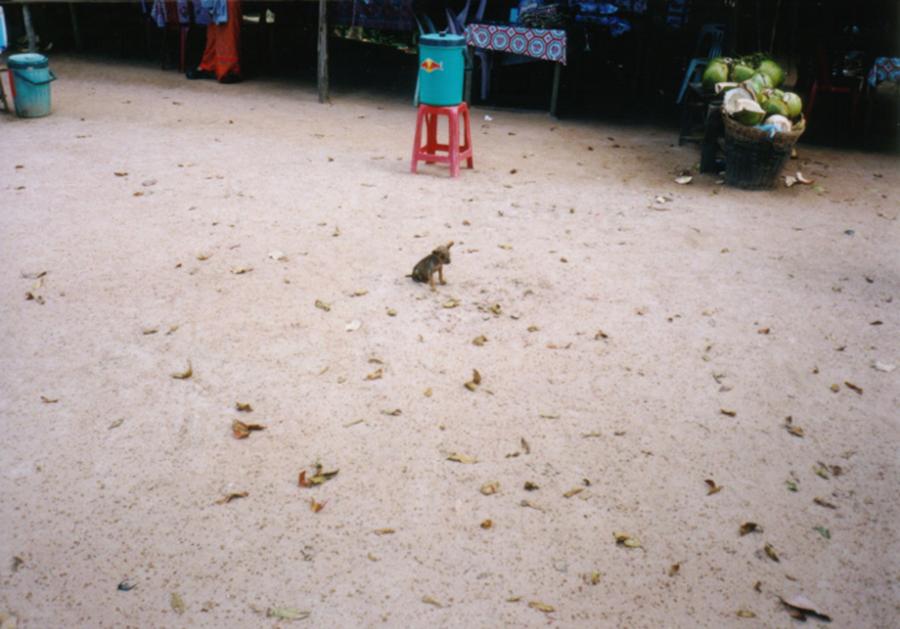 カンボジア040